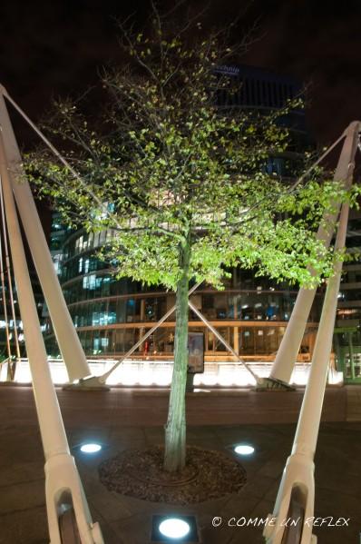 Photo de nuit à La Défense avec un zeste de nature.Photo-Pele-Mele 0238